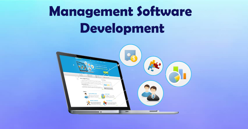 management software development